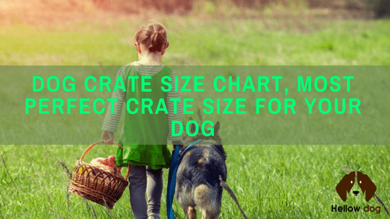 dog crate sizing chart