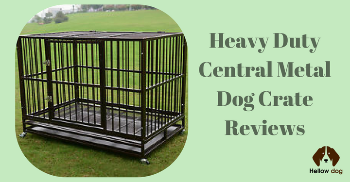 Most Durable Dog Crates