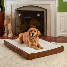 Happy Hound Oscar Orthopedic Dog Bed