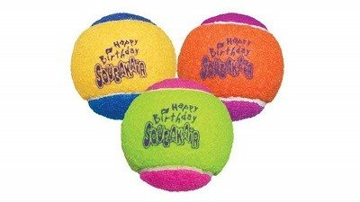 Kong Ball for Dogs