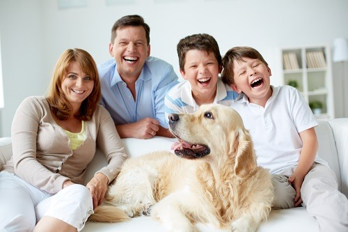 The Family Dog Body Language