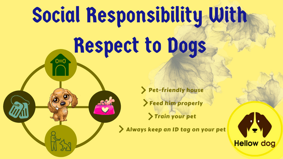 Social Responsibility to Dogs