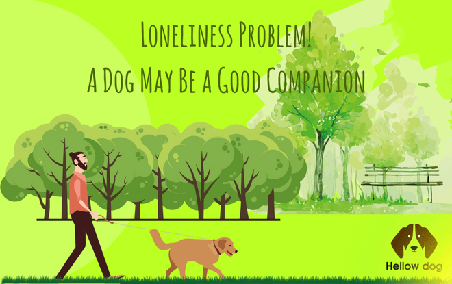 what is a companion dog 