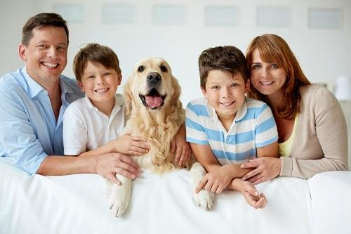 Dog Brings Happiness in Family