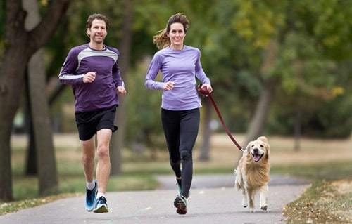 outdoor exercise with dog